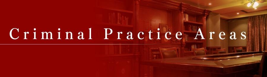 Criminal Practice Areas
